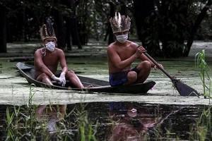滥采伐死灰复燃2倍死亡率巴西原始部落又遭殃了
